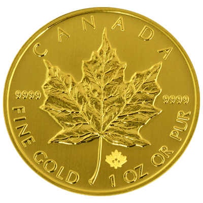 Canadian-Gold-Maple-Back-view-South-Bay-Gold