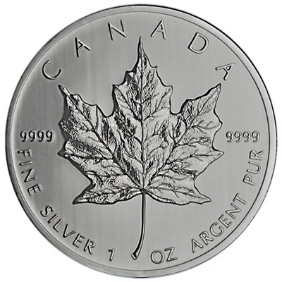 Canadian-Silver-Maple-Leaf-Back-view-South-Bay-Gold