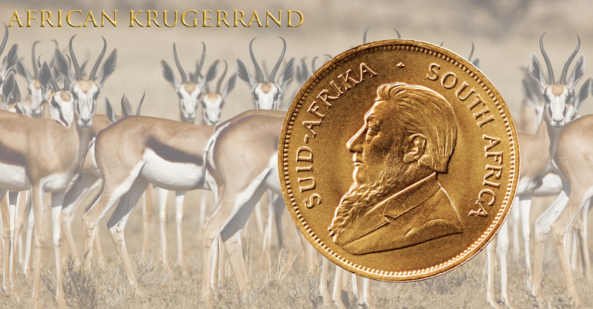 Gold Krugerrand South Bay Gold - Los Angeles - 310 791 5431